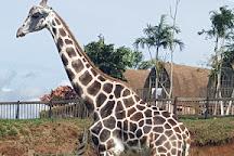 Joya Grande Zoo y Eco Parque, Santa Cruz de Yojoa, Honduras