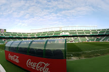 Estadio Manuel Martinez Valero, Elche, Spain