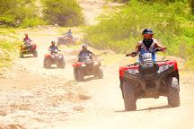 Real Baja Tours, Cabo San Lucas, Mexico