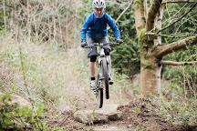 Castlewellan Mountain Bike Trails, Castlewellan, United Kingdom