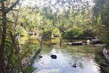 Cenote Azul, Yucatan Peninsula, Mexico