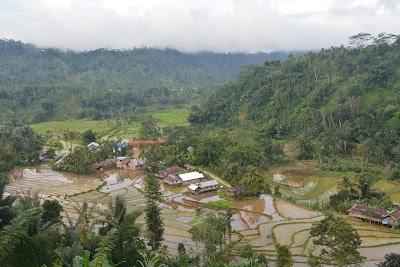 Sinjai Borong