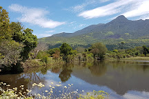 Garden Route Botanical Gardens, George, South Africa