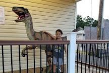 Branson Dinosaur Museum, Branson, United States