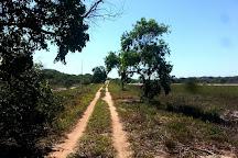 Parque Estadual Paulo Cesar Vinha, Guarapari, Brazil