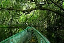 Parque Isla Salamanca, Barranquilla, Colombia