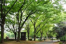 Komazawa Olympic Park, Setagaya, Japan