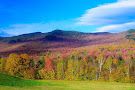 Mount Mansfield State Forest