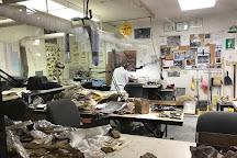 Tate Geological Museum, Casper, United States
