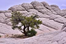 Vermilion Cliffs National Monument, Page, United States