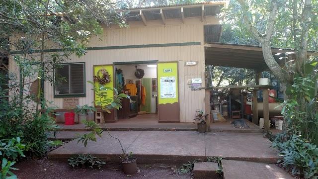 Purdy's Natural Macadamia Nut Farm