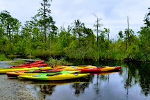Alligator River National Wildlife Refuge, Manteo, United States