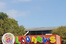 New Looney, Ciampino, Italy