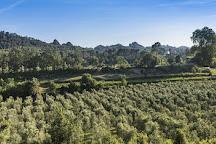 Azur Wine Tours, Vence, France