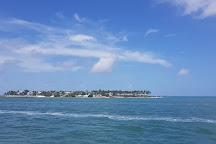 Key West Glass Bottom Boats, Key West, United States