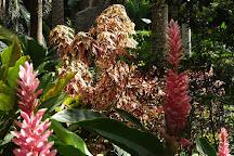 Hunte's Gardens, Saint Joseph Parish, Barbados