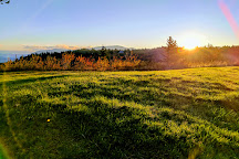 Portland Women's Forum State Scenic Viewpoint, Troutdale, United States