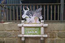 Countrylife Farm, Dunsborough, Australia