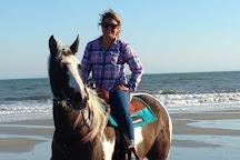 Grand Strand Horseback Riding, Aynor, United States