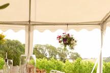 Terlingham Vineyard, Hawkinge, United Kingdom