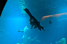 AQUATIS Aquarium-Vivarium Lausanne, Lausanne, Switzerland