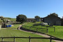 Ace-Hi Ranch, Cape Schanck, Australia