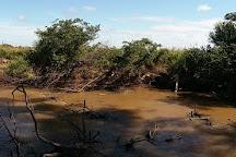 Parque Nacional Vapor Cue, Caraguatay, Paraguay