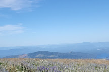 Mount Spokane, Spokane, United States