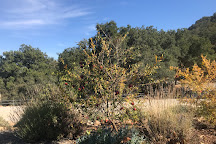 Lone Madrone Winery, Paso Robles, United States