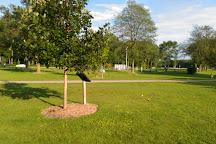 Lakeview Park, Middleton, United States