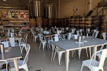 Burlington Beer Company, Williston, United States