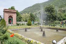 Indira Gandhi Tulip Garden, Srinagar, India