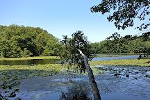 Teatown Lake Reservation, Ossining, United States