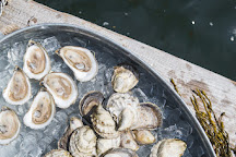 Glidden Point Oyster Farms, Edgecomb, United States