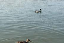 Danube River, Belgrade, Serbia