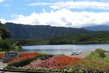Saiko Lake, Fujikawaguchiko-machi, Japan