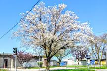 Hyde Park, Niagara Falls, United States