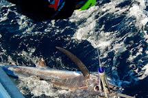 Mahi Mahi Fishing Charter, Coral Bay, Australia