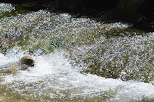 Nacimiento de Rio Frio, Riopar, Spain
