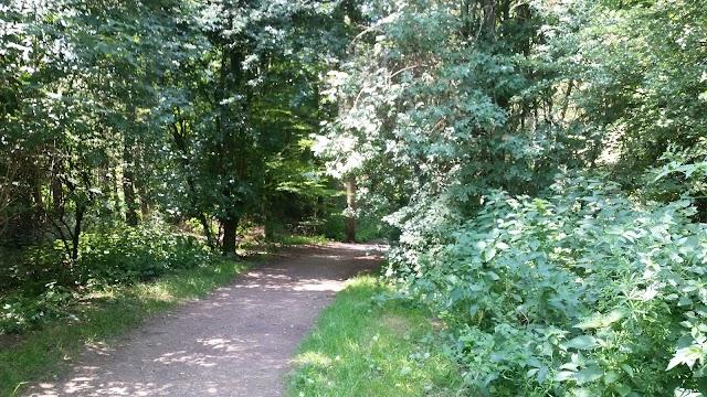 National Trust - Watlington Hill