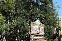 Parque Municipal da Pedra Montada, Guararema, Brazil
