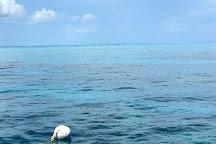 Looe Key (Florida Keys National Marine Sanctuary), Florida Keys, United States