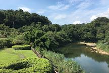 Shifen Scenic Area, Pingxi, Taiwan