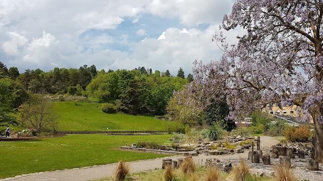 Botanischer Garten der Universität Würzburg