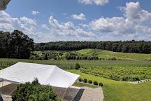 Blue Ridge Estate Winery, Saylorsburg, United States