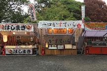 Iga Ueno Castle, Iga, Japan