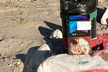 The Black Mailbox, Alamo, United States