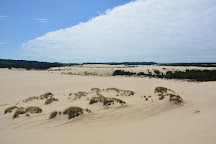 John Dellenback Dunes Trailhead, Florence, United States