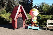 Snoopy's Home Ice, Santa Rosa, United States