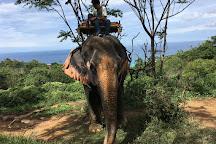 Kok Chang Safari Elephant Trekking, Kata Beach, Thailand